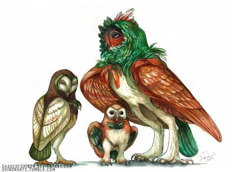 Rowlet Family by ShadeofShinon