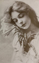 Lillian Gish - First lady of American cinema by Lespion1944