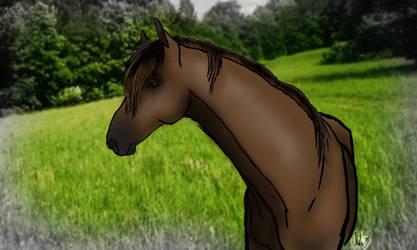 Horse by GliksiVanZero