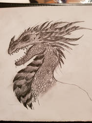 Dragon drawing by yadnamas2