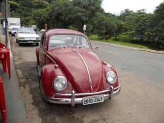 Beetle by DanielMendes90