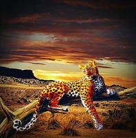 The Colors Of The Savannah by poisen2014