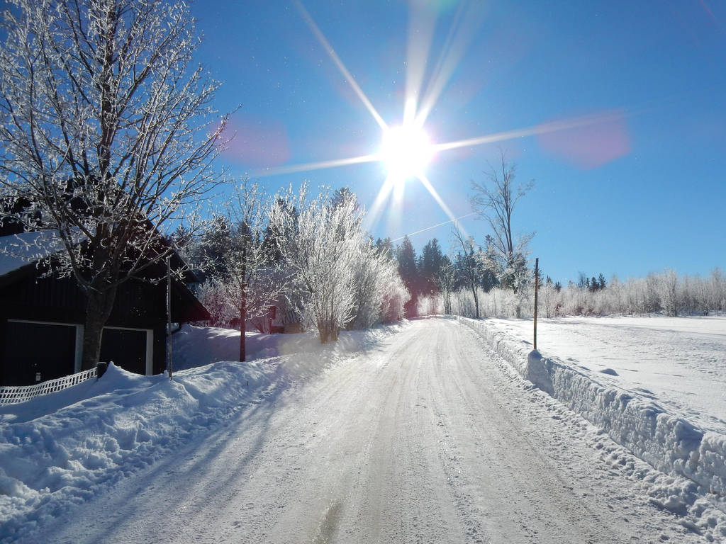 Sunshine in the Winter by poisen2014