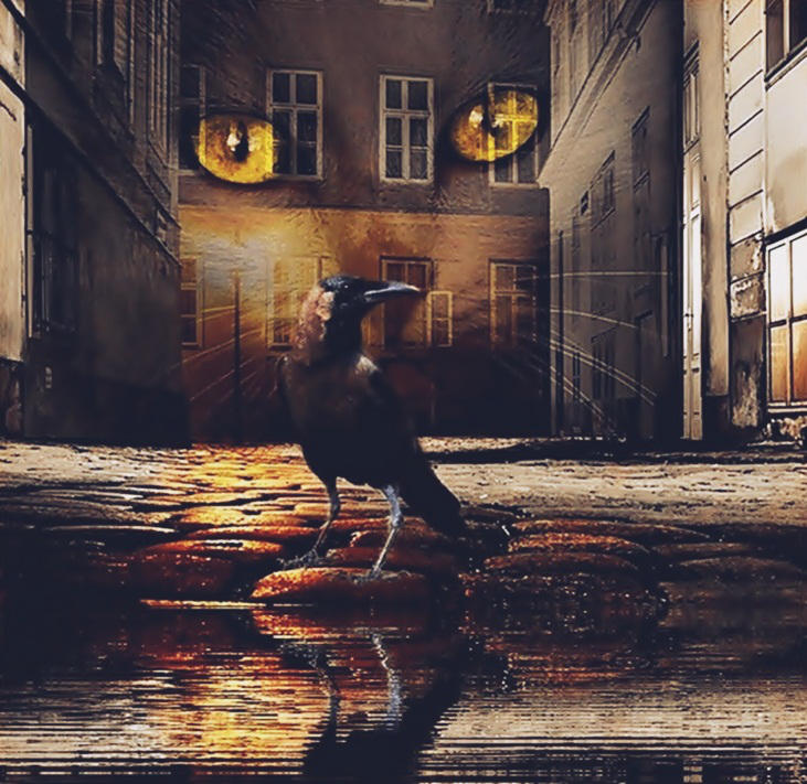 Eyes of dark Alleyways by poisen2014