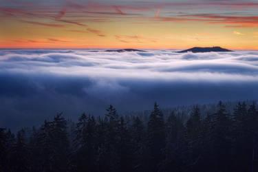foggy flood by MartinAmm