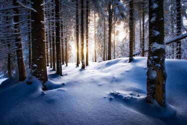 wintertime love III by MartinAmm