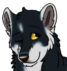 Blaine, Adult Mugshot 1-2018 by nightangelwolf