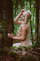 Deep in the forest where the elves live by gb62da