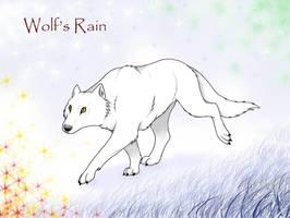 Kiba, the White Wolf by ChiroOokami