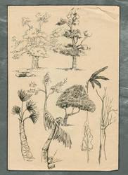 Tree Sketch 2 by vidyadhar