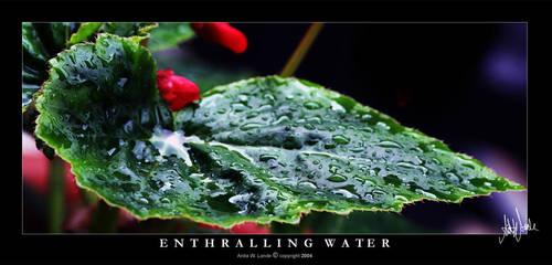 Enthralling Water by neeta