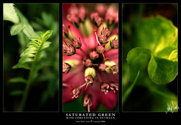 Saturated Green by neeta