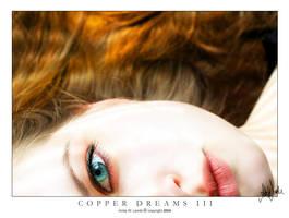 Copper Dreams III by neeta