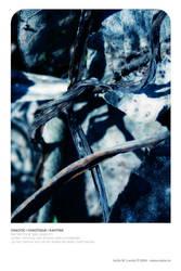04 - Chaotic by neeta