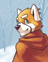 Tavi in the Snow by silverava