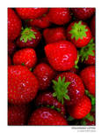 strawberry letter by MrGerard