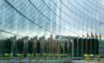 Glass Fassade with Chairs by enaruna