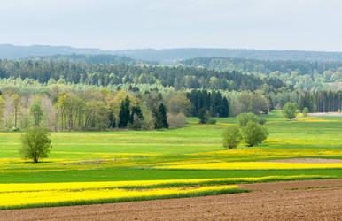 Landscape in the Spring by enaruna