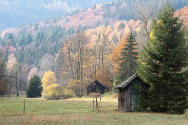 Autumn Landscape in the Black Forest by enaruna