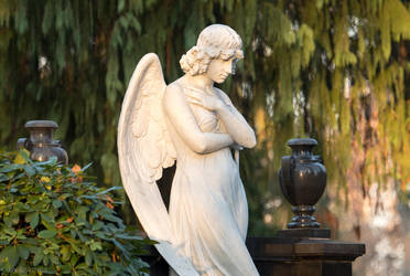 Angel in the Evening by enaruna