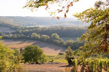 Vineyards in a Meander of the River Enz by enaruna