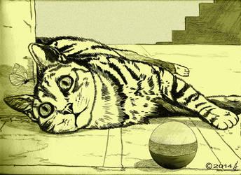 Kitty cat 2 by ricky4