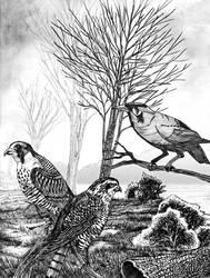 The birds v.2 by ricky4