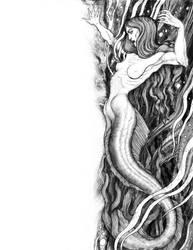 Mermaid by Jaime-Gmad