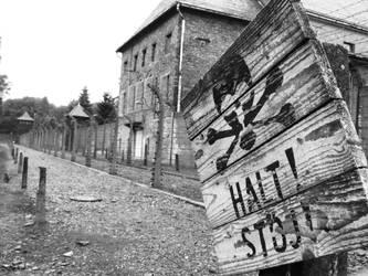 halt by Ladan-cz