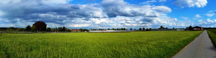 field by Ladan-cz