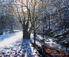 Light Winter by espiritoart