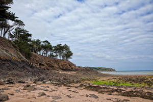 Rugged Beach Landscape - HDR by somadjinn