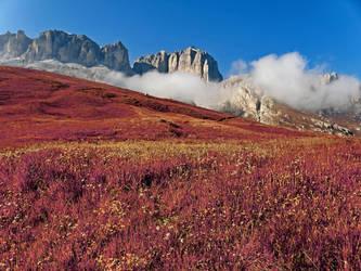 Morning Mists - Autumn Warmth by somadjinn