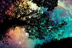 Sam's Organic Universe by somadjinn