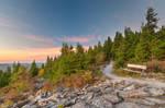 Spruce Knob Twilight Trail by somadjinn