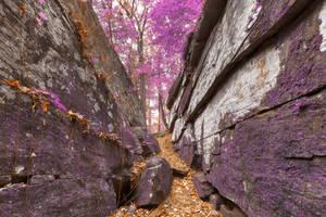 Gettysburg Grotto - Lavender Fantasy by somadjinn