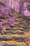 Gold Lavender Staircase by somadjinn