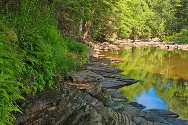 Loyalsock Creek by somadjinn