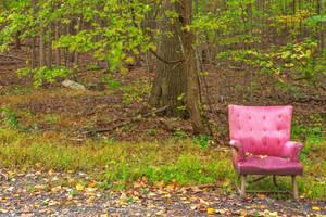 Abandoned Forest Comfort (freebie) by somadjinn