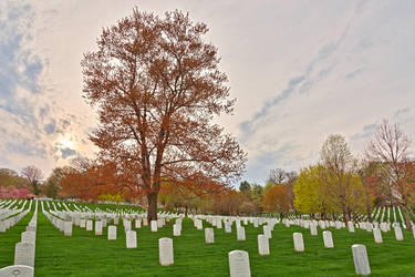 Cloudy Arlington Cemetery Sunset (freebie) by somadjinn