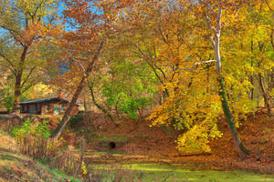 Autumn Harpers Ferry Canal by somadjinn