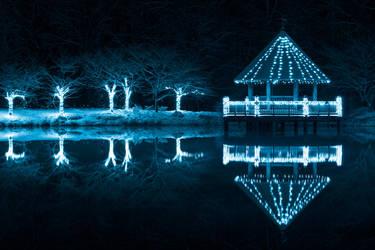 Blue Winter Night - Meadowlark Gardens by somadjinn