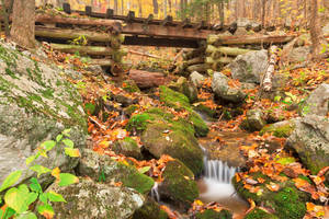 Autumn Logging Railroad Stream by somadjinn