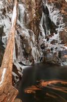 Winter Spheniscus Falls by somadjinn
