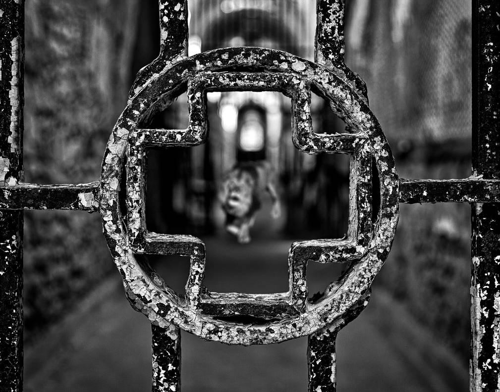Dead Center by somadjinn