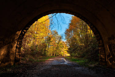 Autumn Tunnel to Nowhere (freebie) by somadjinn