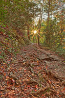 Smoky Mountain Sunburst Trail by somadjinn