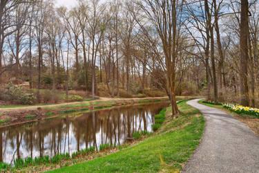 Winding Brookside Trail (freebie) by somadjinn