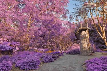Purple Clyne Tower Path by somadjinn