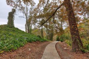 Sugarloaf Phantom Trail (freebie) by somadjinn